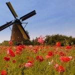 ทุนการศึกษาระดับปริญญาโท ปริญญาเอก ประเทศเนเธอร์แลนด์ รวมถึงคอร์สระยะสั้นในเนเธอร์แลนด์