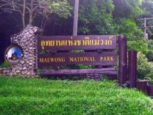 maewong