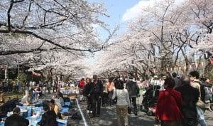 Ueno-Park2-300x177