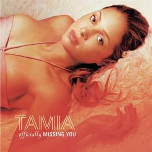 แปลเพลง Officially Missing You – Tamia