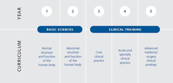 Medicine NUS year&curriculum