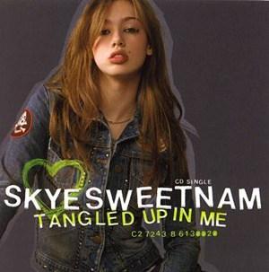 แปลเพลง Tangled Up In Me – Skye Sweetnam