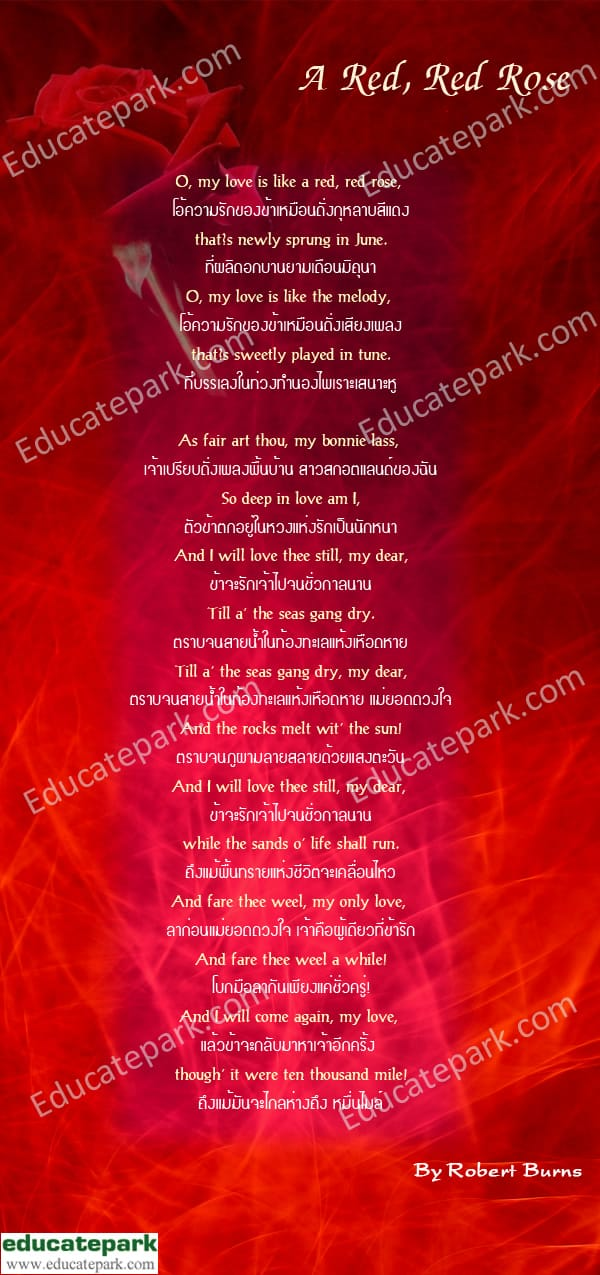 A Red Red Rose   Robert Burns