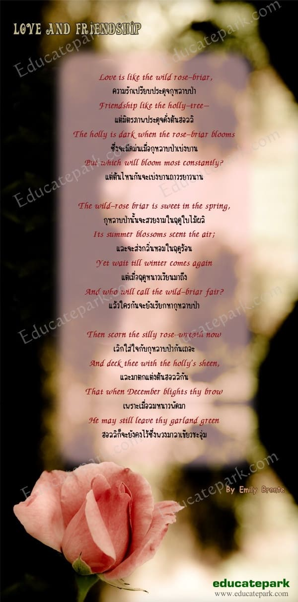 บทกลอน Love anf Friendship - Emily Bronte