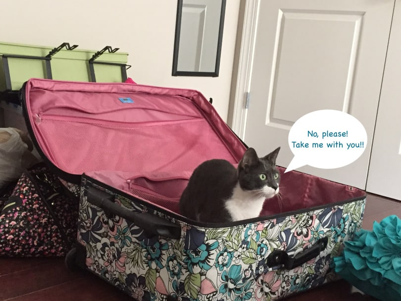 จัดกระเป๋าเดินทาง ไปต่างประเทศ checklist กระเป๋าเดินทาง