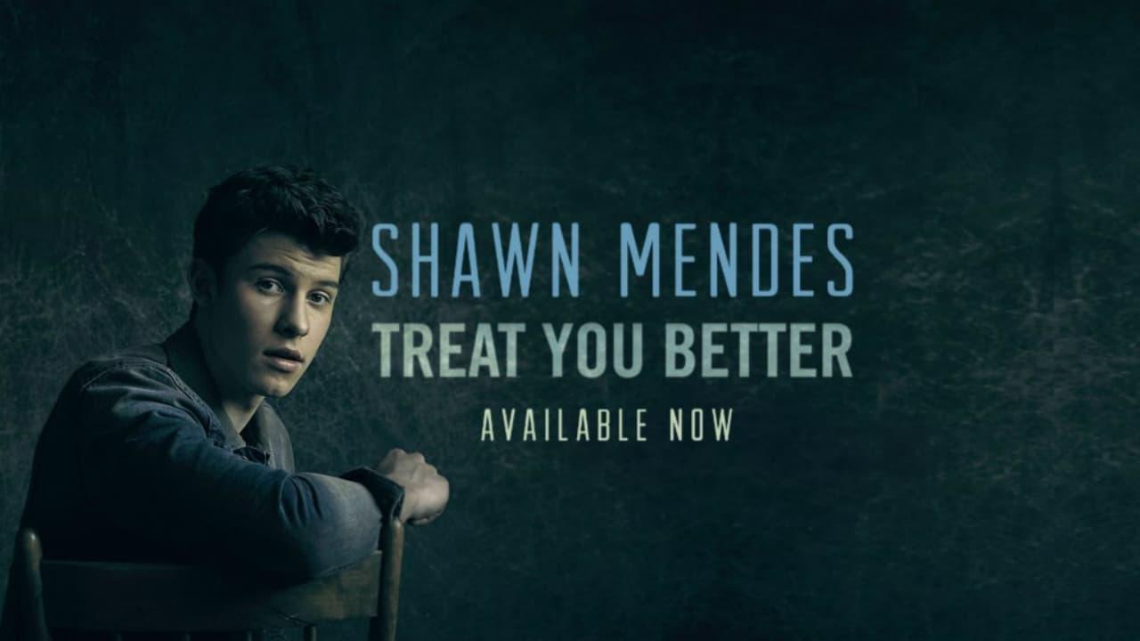แปลเพลง Treat You Better – Shawn Mendes