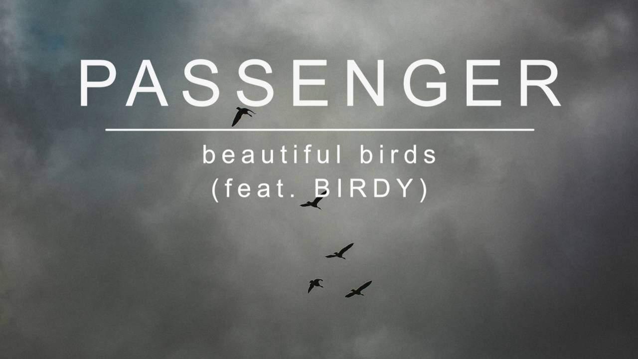 แปลเพลง Beautiful Birds – Passenger feat. Birdy