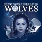 แปลเพลง Wolves – Selena Gomez & Marshmello ความหมายเพลง