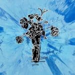 แปลเพลง Supermarket Flowers – Ed Sheeran ความหมายเพลง