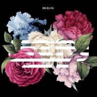 แปลเพลง FLOWER ROAD   BIGBANG