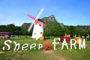 Swiss-Sheep-Farm-19