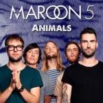 แปลเพลง Animals – Maroon 5 ความหมายเพลง Animals