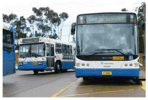 sydney_bus-300x202