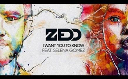 แปลเพลง I Want You To Know - Zedd (Feat. Selena Gomez)
