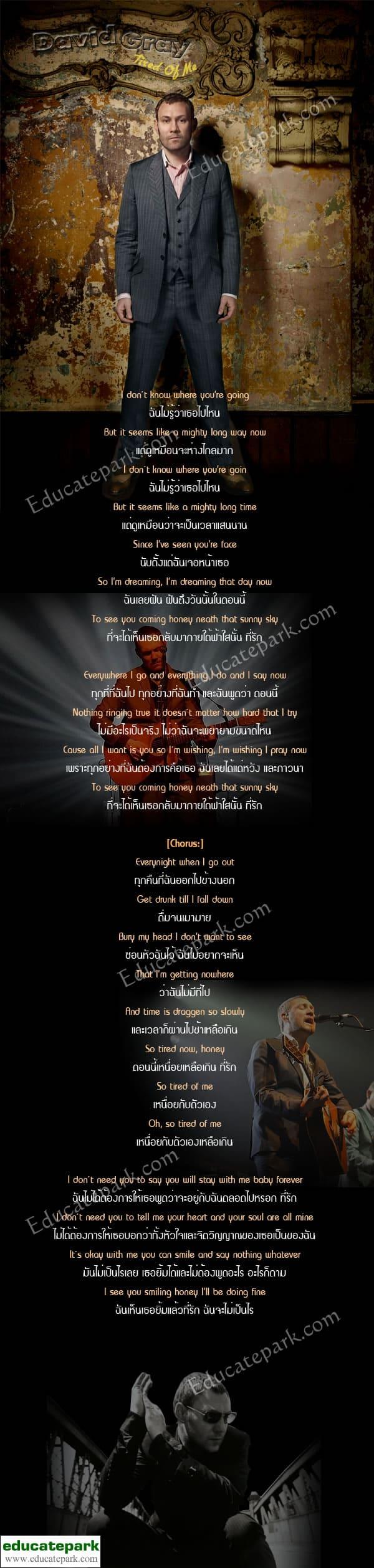 แปลเพลง Tired of Me - David Gray