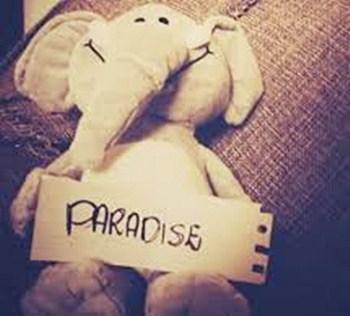 แปลเพลง Paradise - Coldplay