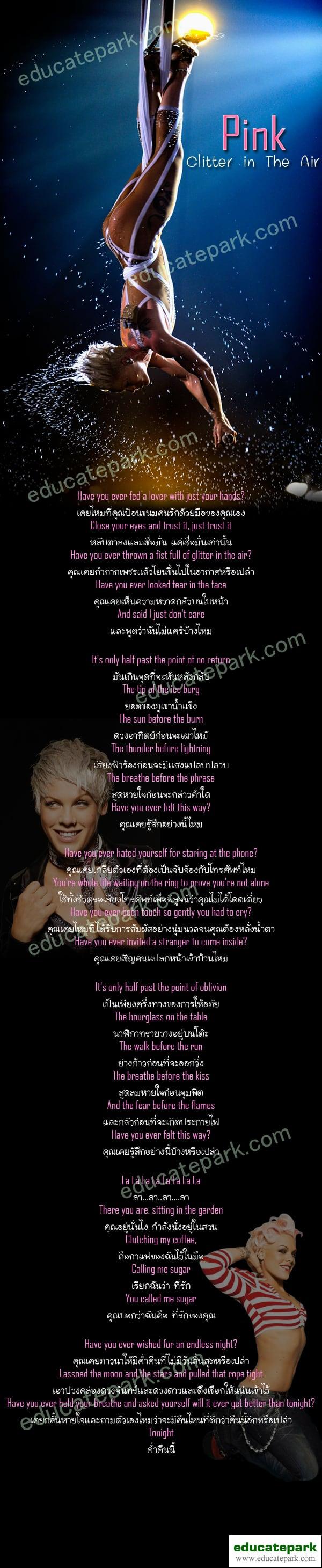 แปลเพลง Glitter in The Air - Pink