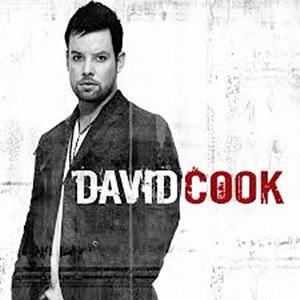 แปลเพลง Permanent - David Cook