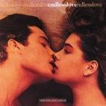 แปลเพลง Endless Love – Diana Ross & Lionel Richie
