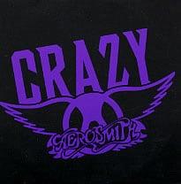 แปลเพลง Crazy - Aerosmiths