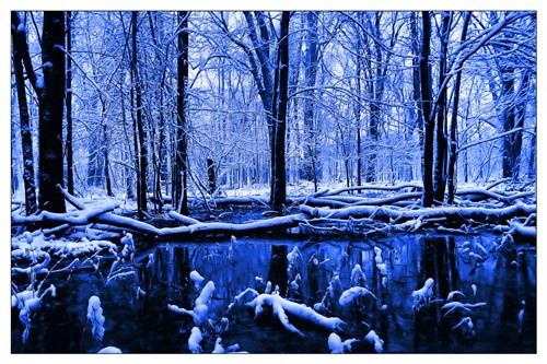 แปลเพลง My December - Linkin Park