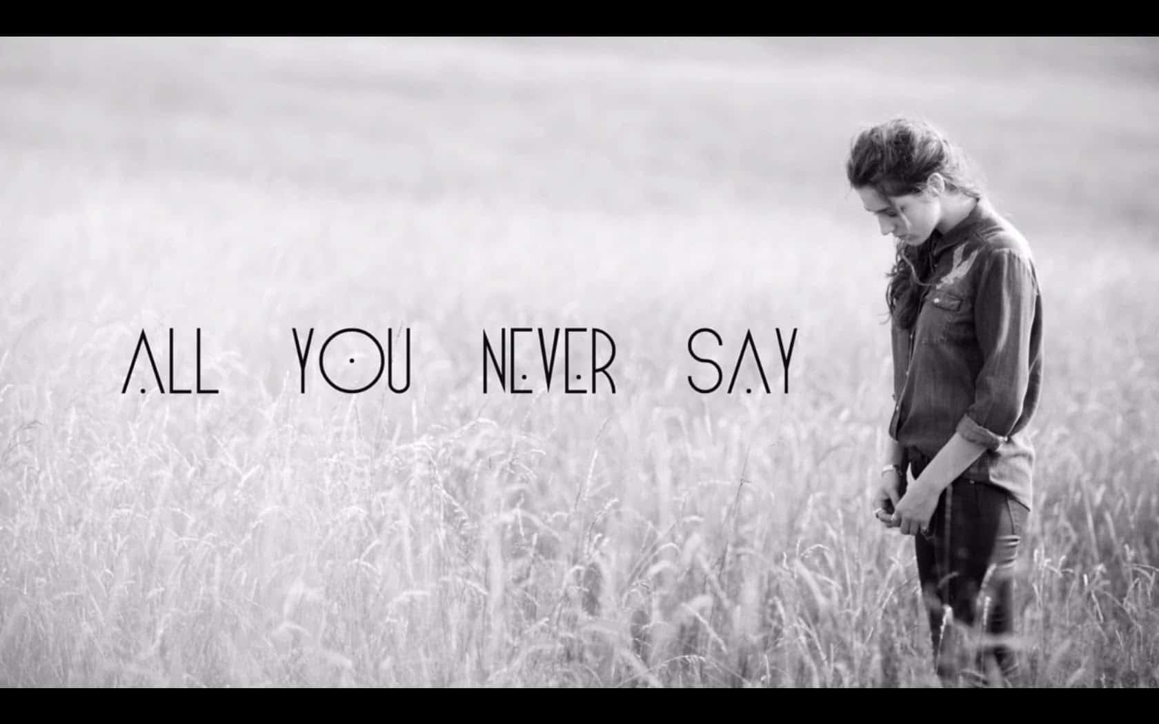 แปลเพลง All You Never Say