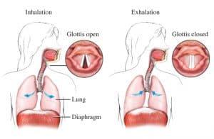 สะอึก แก้สะอึก วิธีแก้สะอึก วิธีแก้อาการสะอึก สะอึกทำอย่างไรให้หาย (Hiccup)