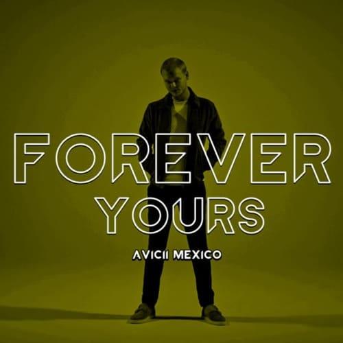 แปลเพลง Forever Yours - Avicii feat. Jusin Bieber