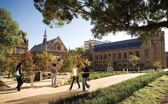Photo Credit: www.adelaide.edu.au