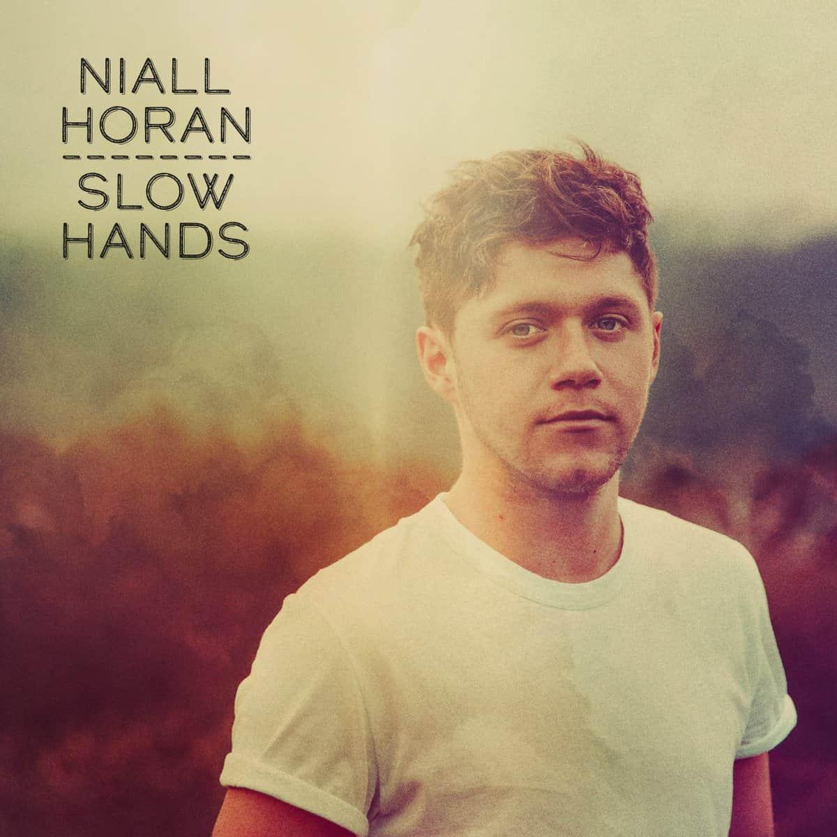 แปลเพลง Slow Hands - Niall Horan
