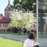 IH-Berlin GLS German Language School Berlin