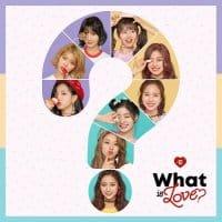 แปลเพลง What is love | TWICE