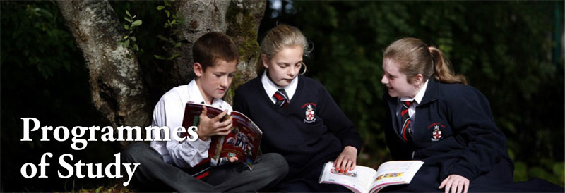 เรียนมัธยมที่ไอร์แลนด์