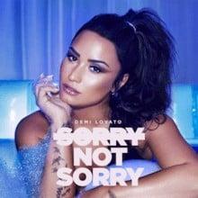 แปลเพลง Sorry Not Sorry – Demi Lovato เพลงแปล Sorry Not Sorry
