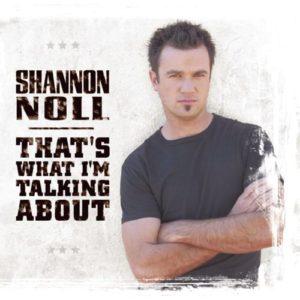 แปลเพลง The Way That I Feel – Shannon Noll