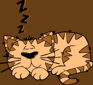 เรียนภาษาอังกฤษ ไปกับเรื่องราวของการนอน | คำศัพท์ สำนวนที่เกี่ยวข้อง