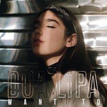 แปลเพลง Want To – Dua Lipa ความหมายเพลง Want To