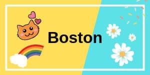 เรียนภาษาที่อเมริกา Boston