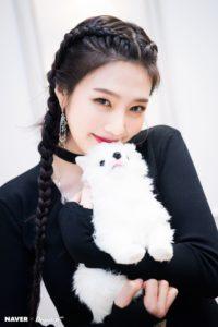 Red Velvet Profile