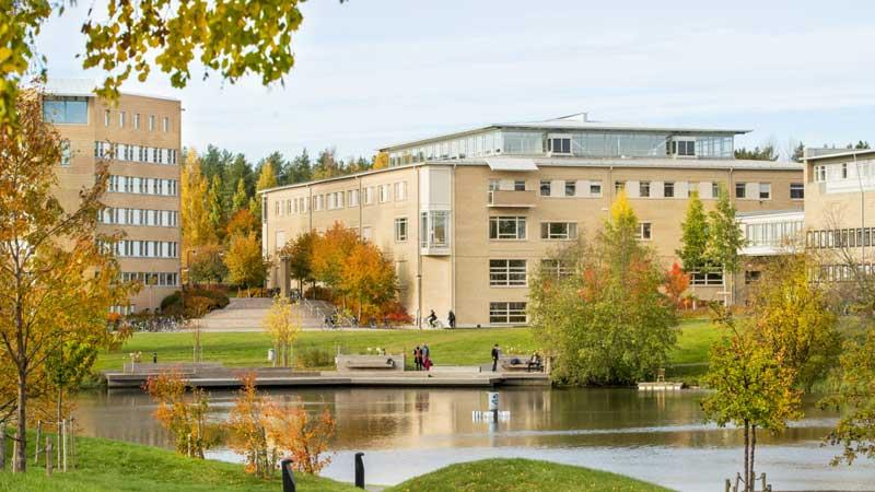 ทุนการศึกษาของ Umeå University