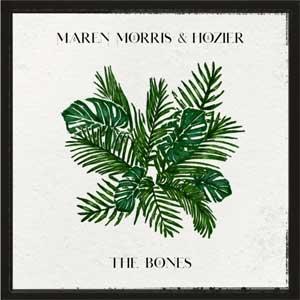 แปลเพลง The Bones - Maren Morris & Hozier เนื้อเพลง
